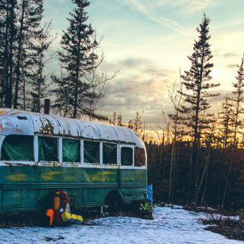 into the wild bus